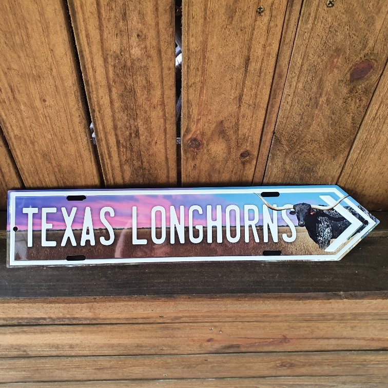 Texas Longhorns sign